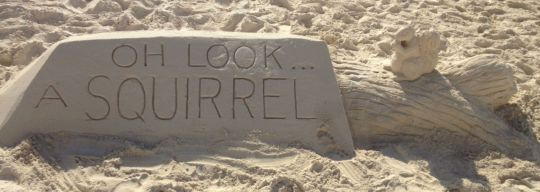 Some talented people created this lovely reminder on the beach in front of our resort during week two, Cancun Land Cruise